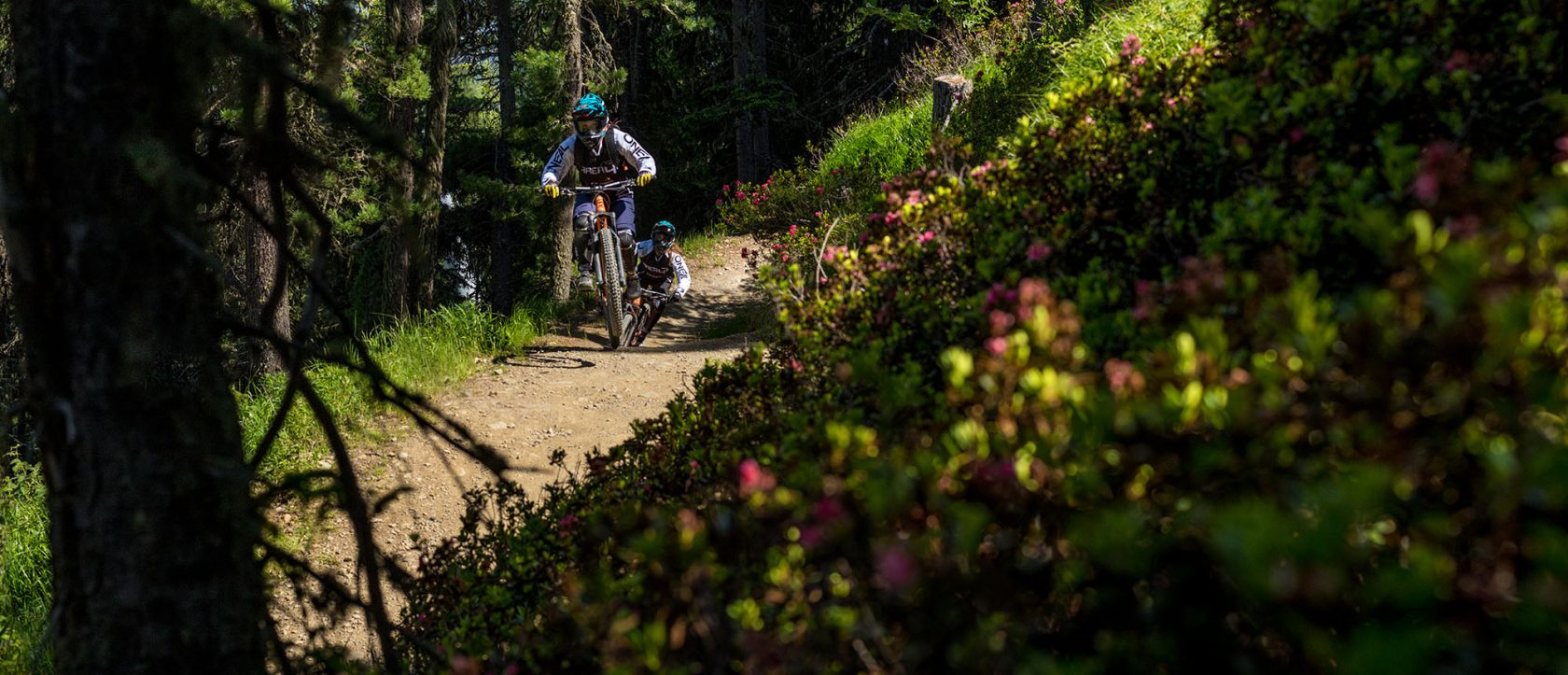 guided mountainbike trips with AREA 47